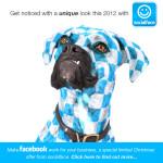 Social media puppy love